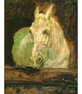 El caballo blanco Gazelle