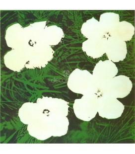 Flores, 1964