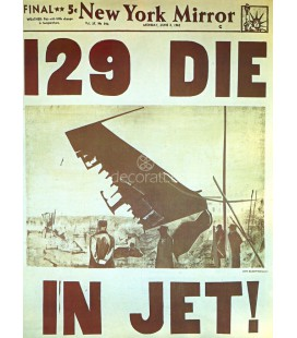 129 Die in jet, andy_warhol