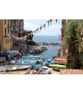 Barcas en Manarola, Italia