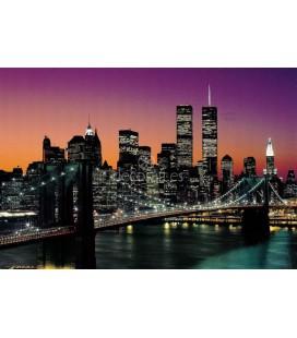Brooklyn Bridge, Henri Silberman