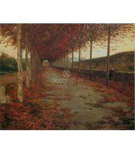 Carretera en otoño (Cataluña)
